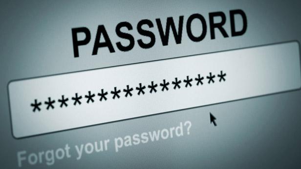 password-136401549486902601